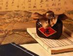二锅头酒  京酒文化之典范